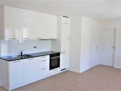 Küche / Wohn- Esszimmer