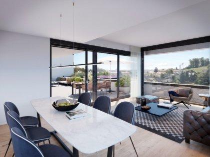 Visualisierung Wohn- und Essbereich