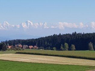 Grossartige Weit- und Alpensicht